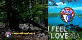 gozdorog1 love